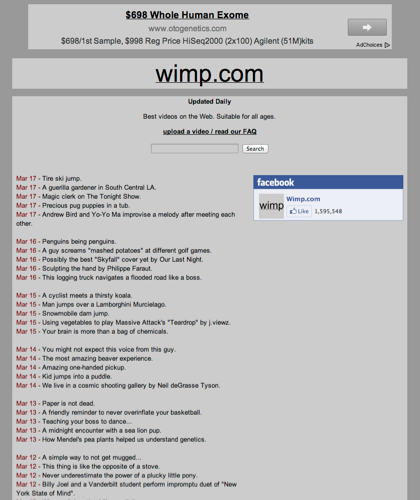 Best Online Videos | Wimp.com